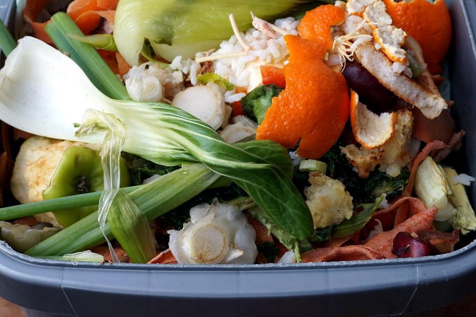 Food Waste Disposal For Restaurants